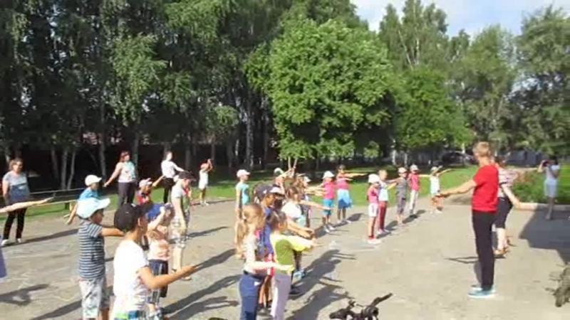 Пришкольный лагерь . Борковская школа 2018 год .