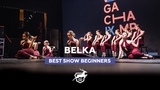 VOLGA CHAMP 2018 IX BEST SHOW BEGINNERS BELKA
