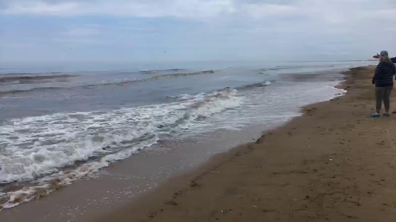 Джемете. Пляж 1-го Проезда. 11.05.2019
