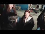 yeojin is so fucking sick of her members' shit
