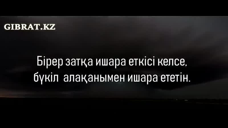 Пайғамбарымыздың с ғ с Көрінісі.mp4