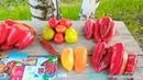 СЛАДКИЙ ПЕРЕЦ 2018 ОТЗЫВ о 7 сортах и 2 гибридах обзор перец урожай pepper