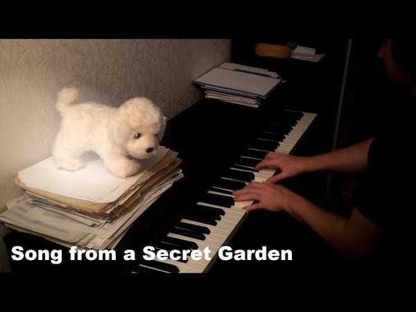 Song from a Secret Garden (my improvisation)