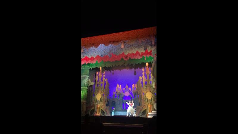 Мариинский.Балет Щелкунчика .Питер