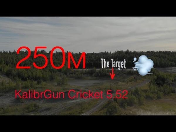Стрельба из Крикет на 250 в сильный ветер обзор на бинокль .