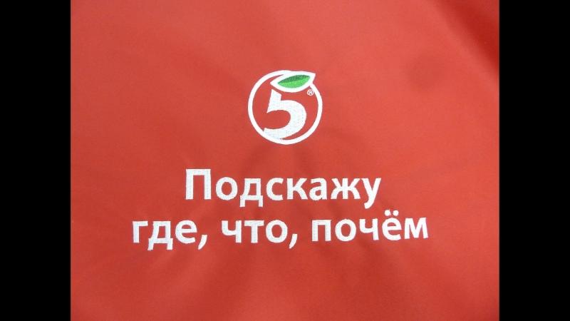 Запись телефонных приветствий, IVR Пятерочка главзвук.рф