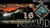 Icewind Dale Прохождение #16 Пещера Дорна