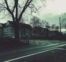 Алексей Смирнов фото #7