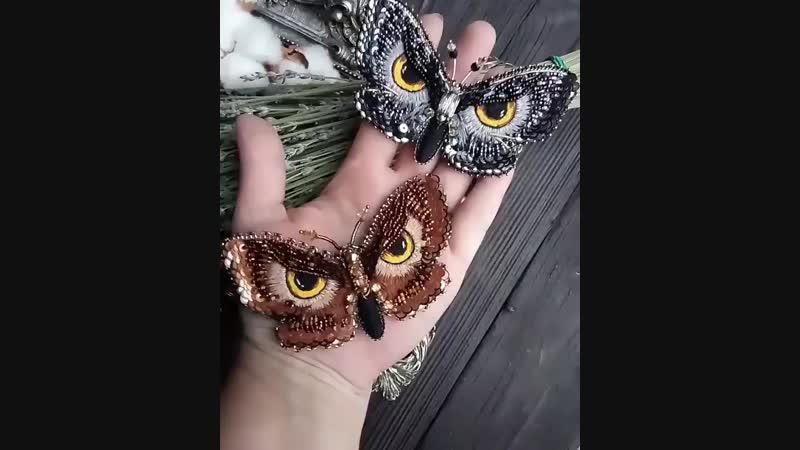 Бабочки-глазастики