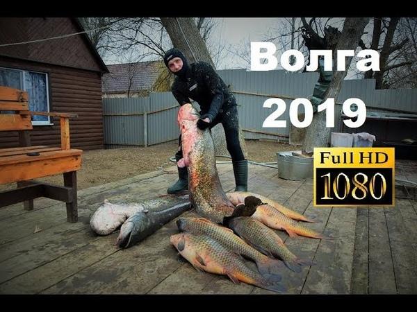 Волга 2019 База Фартовый