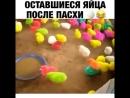 Оставшиеся яйца после пасхи😀