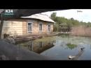 Наукоград тонет.