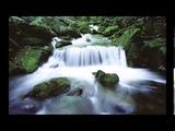 Deep Relaxation Serenity - Dan Gibson