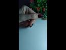 Маникюр Выравнивание нп покрытие цветом