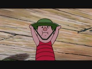Новые приключения Винни Пуха / The New Adventures of Winnie the Pooh. 1988-1991. Сезон 1, серии 21-26. VHS
