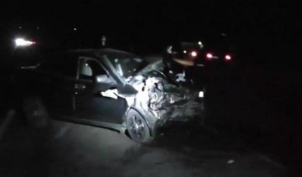 Под Даусузом автомобиль столкнулся с гуляющей по трассе лошадью