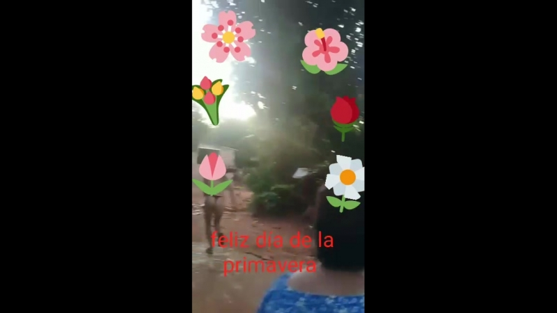 WhatsApp Video 2018-09-21 at 15.40.04