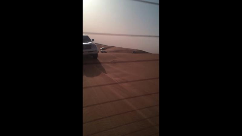 Сафари по песчаным дюнам