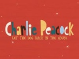 Let The Dog Back In The House - Charlie Peacock Music Video