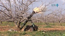 Джихадистские группировки атаковали позиции правительственных сил в районе н п Таль Марак и Хамдания