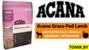 Сухой корм для собак Acana Grass Fed Lamb купить в Минске - Акана с ЯГНЁНКОМ и ЯБЛОКОМ для взр.собак