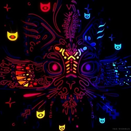 Psychedelic cat -_- in the night   Stilz - Test Pilot