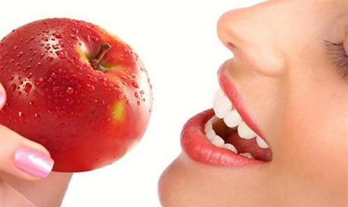 Основы пищеварения и процессы в пищеварительной системе