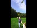 Запускаем воздушного змея в День Рождения внука