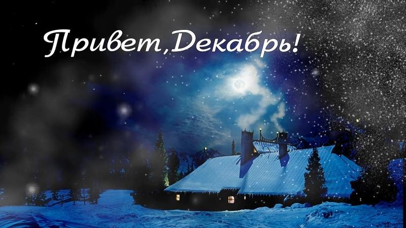 Привет, Декабрь! С Первым Днём Зимы!