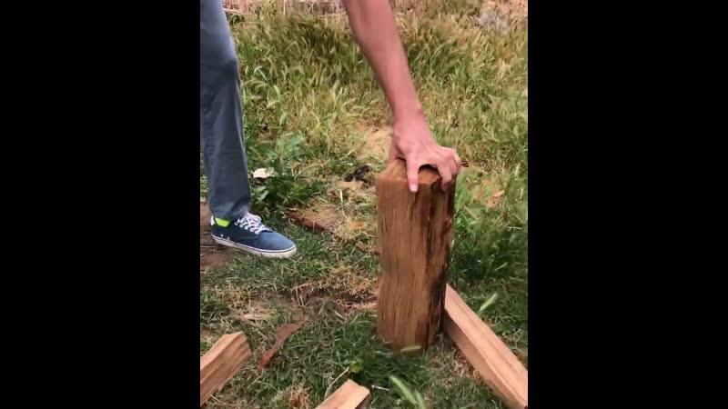 к чему привела колка дров чувака
