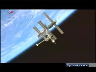 Перепела в космосе