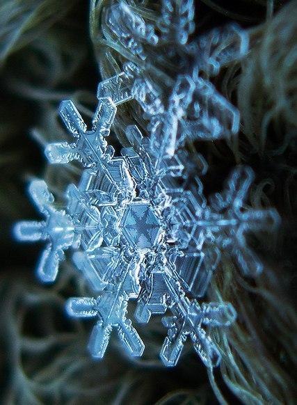 24 интересных фактов про снежинки Снежинки очень красивый и интересный материал созданный природой. Каждый из нас пытался разглядеть этих красавиц. Но это очень трудно, так как они почти сразу