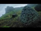S7 Airlines Инопланетное шоу Посетите Землю. 1 Серия Природа