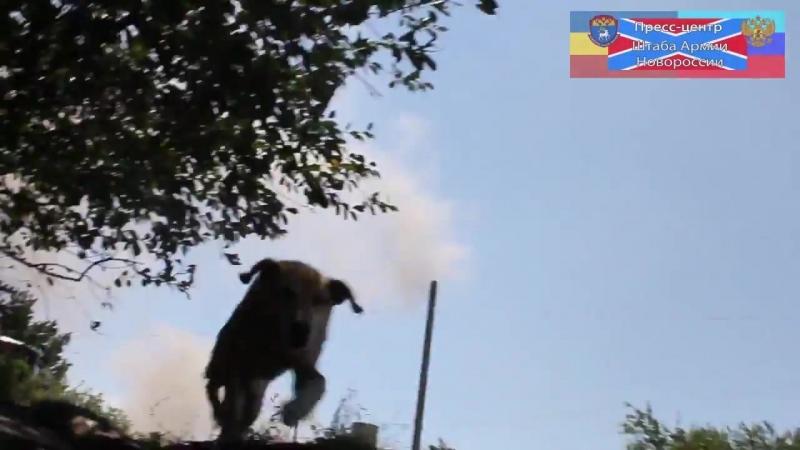 Золотаревка н п между Северском и Лисичанском 20 июля 2014 Под сильный минометный обстрел попали ополченцы