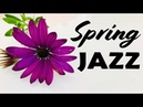 Relaxing Spring JAZZ For Work Study - Smooth JAZZ Bossa Nova Radio