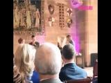 Сова устроила переполох на свадьбе