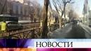 В Екатеринбурге деревья украсили к Новому году а потом спилили вместе с гирляндами