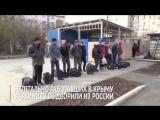 Троллинг высшего уровня: Нелегально работающих в Крыму хохлов выдворили из РФ