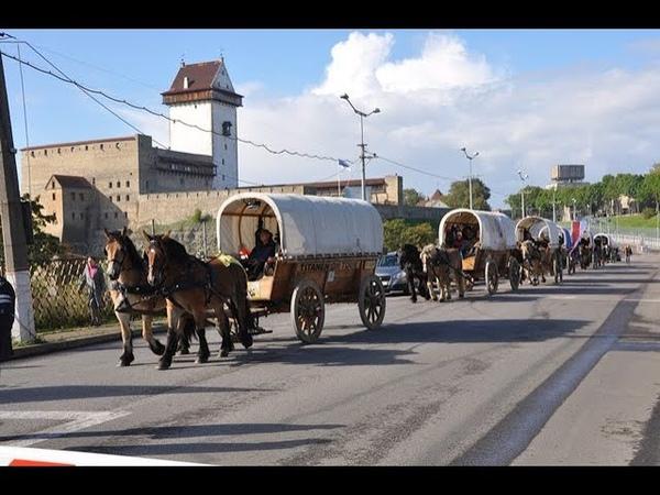 «Титаны в пути»: в Ленобласть прибыл караван международного конного пробега