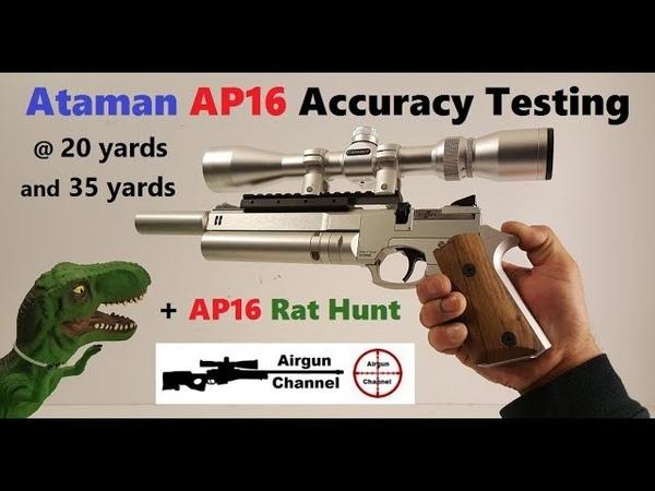 Ataman AP16 Review (AP16 Accuracy Test) AP16 Rat Hunting!