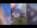 Мигрант спас 11-летнюю девочку из пасти ротвейлера в Подмосковье
