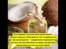 5 мифов о кокосовом масле которые развенчала наука