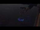 Светящийся планктон