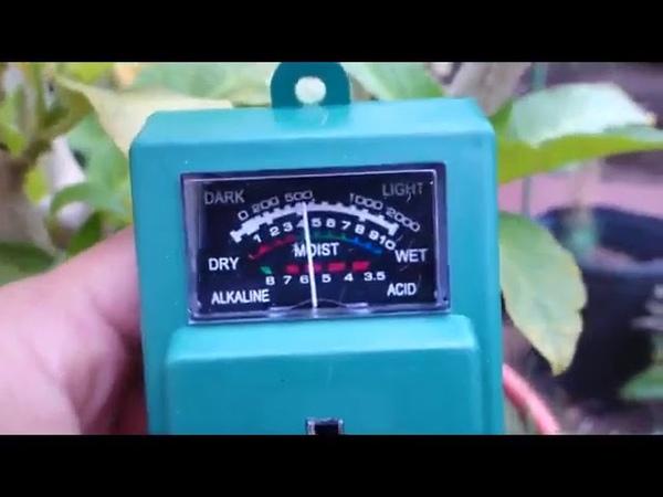 IKKEGOL 3 in 1 Water Moisture PH Light Meter Plant Flowers Sensor Garden