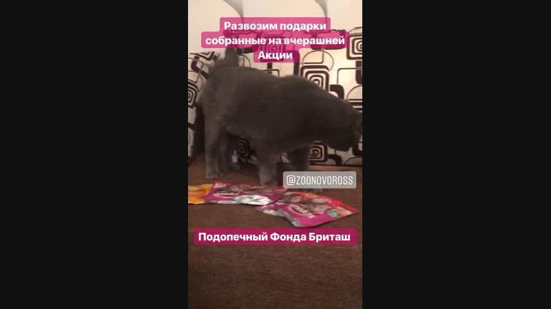 Развоз подарков с Акции 04.11.2018