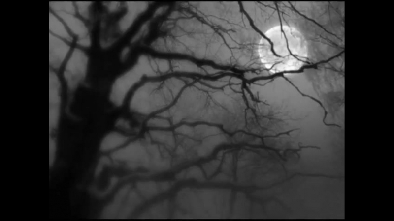 David Sylvian _ Brilliant Trees