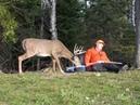 Приколы, неудачи и необычные случаи на охоте. Встреча с дикими животными часть 4