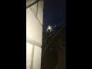 Четыре паук