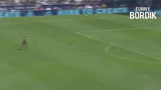 Zlatan Ibrahimovic BOSS