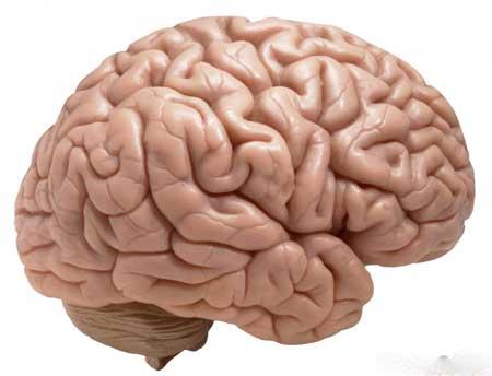 Метамфетамин, сильнодействующее лекарственное средство, увеличивающее дофамин в мозге, является примером амфетамина с высокой степенью привыкания.